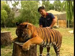cuidados-de-los-animales-salvajes