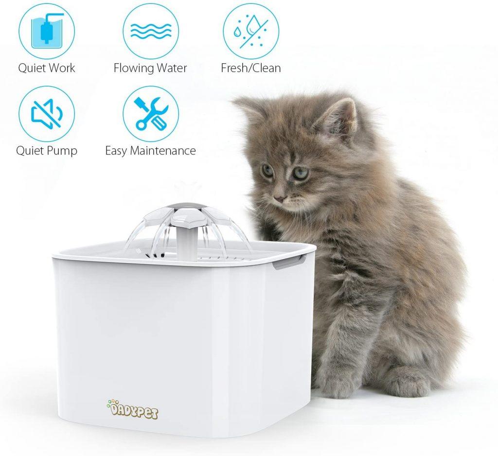 mejores fuentes para gatos