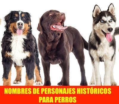 NOMBRES DE PERSONAJES HISTÓRICOS PARA PERROS
