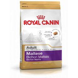 Royal Canin Maltés 24 Canino adulto seco perro comida 1.5KG